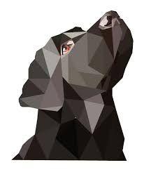 Resultado de imagen para black retriever geometric