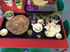 Herbs spices investigation table with questions to promote thinking and senses. Early Years Maths, Early Years Classroom, Science Inquiry, Science Area, Sensory Activities, Sensory Play, Investigation Area, Investigations, Science For Kids