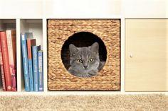 gemütliches Katzenkörbchen Natur für das Ikea Kallax Regal