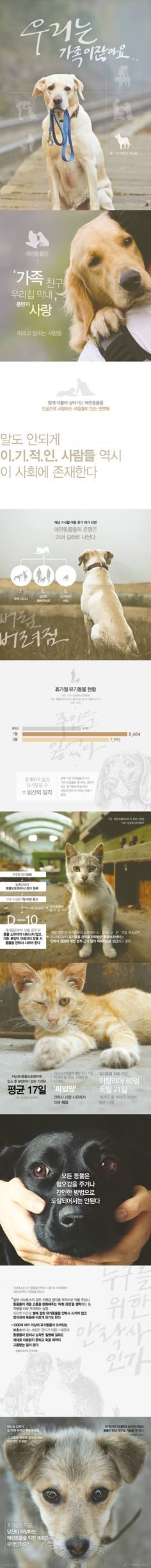 """""""가족 아니었나요?""""…휴가철 버림받는 반려동물 [인포그래픽] #Animal / #Infographic ⓒ 비주얼다이브 무단 복사·전재·재배포 금지"""
