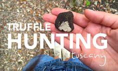 Truffle Hunting in Tuscany at Hotel il Salviatino