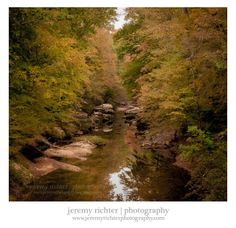 Warm Autumn Colors on the Sipsey River in the Sipsey Wilderness, Bankhead National Forest
