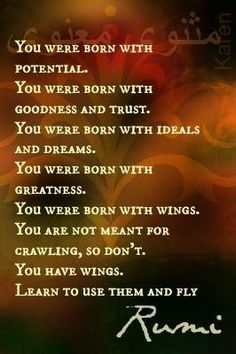 You were born for a reason. Find your purpose, your passion and you will soar!