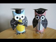 Make a graduation owl gift (to hold $), with a toilet paper roll tube— YouTube