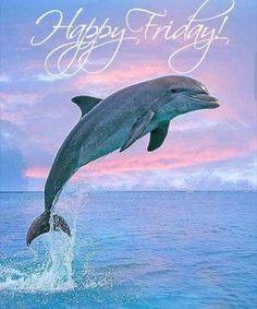 Resultado de imagen para imagenes de feliz cumpleaños con delfines