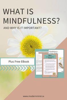 What is Mindfulness? • Modern Mindfulness