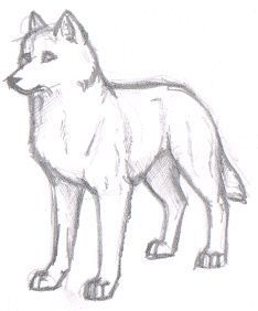 Simple Wolf Drawings In Pencil In 2020 With Images Sketches