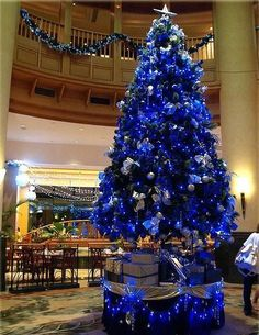 Blue christmas on pinterest blue christmas trees father for How to decorate a white christmas tree with blue lights