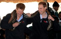 Prince Harry and Prince William hold an African rock python during a visit to Mokolodi Education Centre on June 15, 2010 in Gaborone, Botswana. The two Princes are on a joint trip to Africa which takes in Botswana, Lesotho and finally South Africa. During that time they will visit a number of projects supported by their respective charities Sentebale (Prince Harry) and Tusk Trust (Prince William).