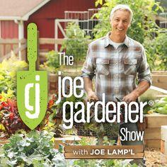 The Joe Gardener podcast.