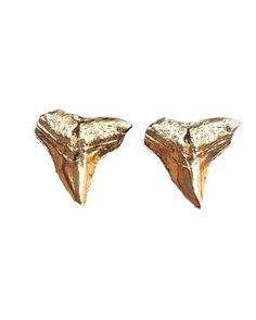 Gold Shark Teeth Studs @aceatthebeach