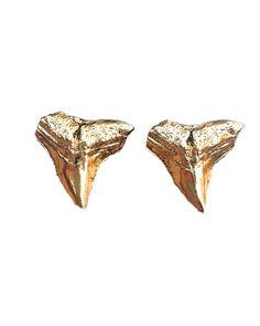 Gold Shark Teeth Studs shark tooth, fashion, shark teeth, larg shark, cloth, accessori, stud, sharks, jewelri