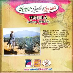 Pueblo mágico donde se elabora una de las bebidas mas representativas de México.
