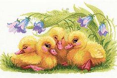 Riolis - Funny Duckilings. Aandoenlijke afbeelding van vier jonge eendjes.