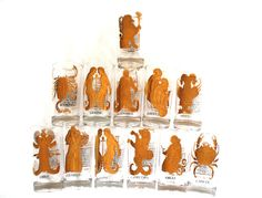 12 Zodiac Sign Astrology Drinking Glasses 22 Kt by Globalfindings
