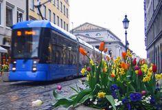 Tram 19 Munich (by Andreas Eder)