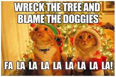 The new song at our house for Christmas…