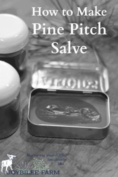 Pine salve is a traditional drawing salve, that draws infections, slivers, and inflammation out of the body. It reduces pain and swelling, helping the body heal itself. One way it works is by increasing peripheral circulation by counter irritation. Healing Herbs, Natural Healing, Natural Home Remedies, Herbal Remedies, Natural Medicine, Herbal Medicine, Cough Remedies For Adults, Les Muscles Endoloris, Diy Cosmetic