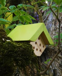 Mini Bug House £4.99 available from www.bughotel.co.uk