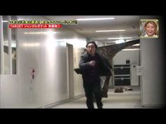 Velociraptor prank! Perhaps one of the greatest pranks of all time... wish we had a hallway to do this in.