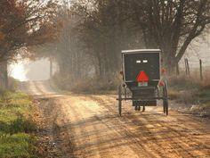 Amish Horse and Buggy, Near Topeka, Indiana
