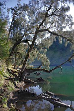 Lake Ranu Kumbolo, Indonesia - A photograph by TUTI WIDIASTUTI (Tooth Sie) via Go Indonesia's Facebook.