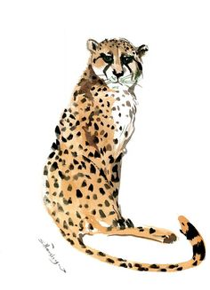 Buy Cheetah, Watercolor by Suren Nersisyan on Artfinder. Discover thousands of other original paintings, prints, sculptures and photography from independent artists. Watercolor Canvas, Watercolor Animals, Bird Artwork, Paper Tags, Lovers Art, Pet Birds, Cheetah, Buy Art, Giraffe
