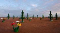 Lego entame son programme de lutte contre la désertification...