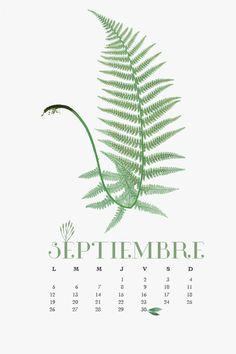 Thing 1, Plant Leaves, Plants, 2016 Calendar, Plant, Planets