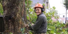 #Tree #Surgeons #Enfield -  Tree surgeons Keith Archer Tree Care provide tree surgery, tree felling, stump grinding and pruning throughout North London.