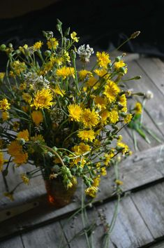 Sow thistle & clover - foraged to make a delicious cake | heneedsfood.com