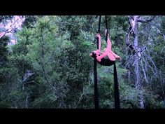 Carnival Chronicles 'Live': Billie Wilson-Coffey - Aerial Silks - YouTubes My favorite Aerial Silk Solo!!
