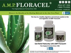 Proper Digestive Function means Prevention & Healing! The key to a healthy digestive and immune system is the oral ingestion of A.M.P. Floracel. #ampfloracel #natural #supplement #organic