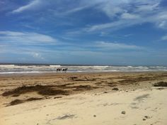 Old Bar Beach, NSW, after big rains and tide surges....