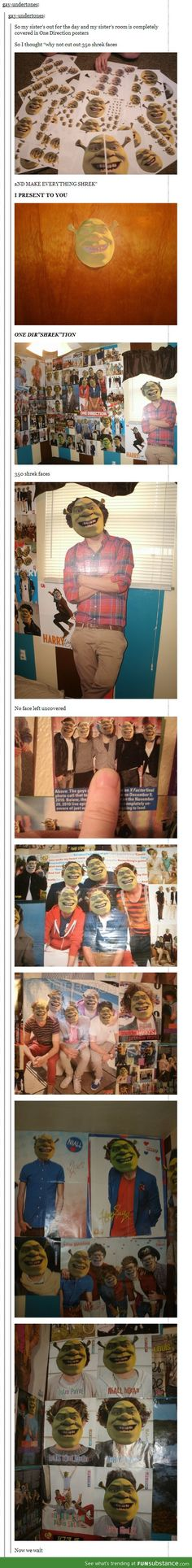One di-shrek-tion I laughed so hard at this, Although, if someone did this to MY 1D posters... Watch out.