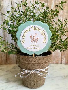 8 ~ Baby Shower favors, flower/plant favors, personalized flower pot favors by KraftandPoppy on Etsy https://www.etsy.com/listing/477641584/8-baby-shower-favors-flowerplant-favors