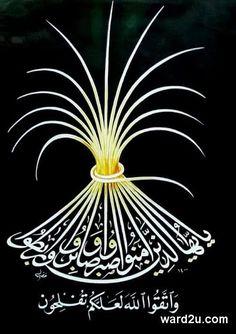 عاشق الحرف العربي المبدع مسعد خضير البورسعيدي
