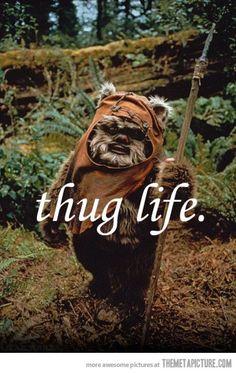 Ewok life