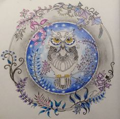 Enchanted forest by Johanna Basford / owl