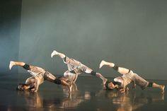 Phoenix Dance Company_Crossing Points 2012
