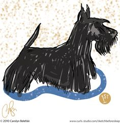 sketches of scottish terriers dogs - Google Search