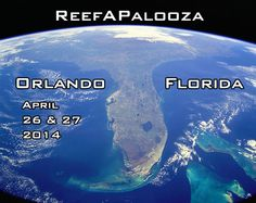 ReefAPalooza Orlando Florida officially on the books for April 26 ...