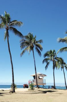 Visit Maui with an insider's edge with tips from our essential Maui guide. Oahu, Maui Hawaii, Hawaii Vacation, Vacation Rentals, Hawaii Travel, Voyage Hawaii, Surfboard, Bon Plan Voyage, Avon
