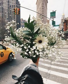 floral bouquet of white flowers in New York City streets by the Flatiron building My Flower, Wild Flowers, Beautiful Flowers, Cactus Flower, Exotic Flowers, Fresh Flowers, Purple Flowers, Plants Are Friends, Flower Aesthetic