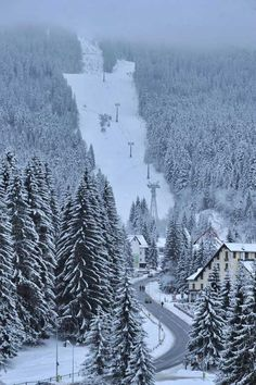 Ski slopes in Poiana Brasov resort, Romania . If you are looking for a ski… Albania, Macedonia, Places To Travel, Places To See, Brasov Romania, Visit Romania, Ski Slopes, Ski Holidays, Winter Scenery