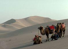Takla Makan Desert | desert, China | Britannica.com