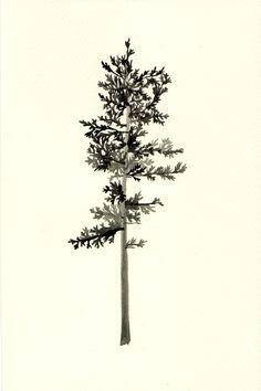 Nadezda Fava | Tree  gouache on paper