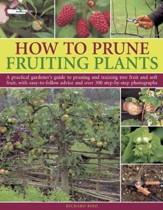 How to Prune Fruiting Plants: A Practical Gardener's Guid... https://www.amazon.com/dp/B011WA11YK/ref=cm_sw_r_pi_dp_x_wcaaybARJ8QF3