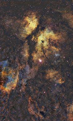 The Gamma Cygni Nebula (IC 1318) Credit: Gordon Haynes