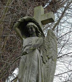 Abney Park Cemetery by E11y, via Flickr